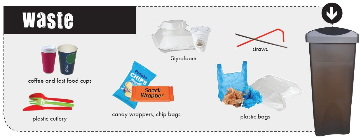 What goes in each bin - Waste