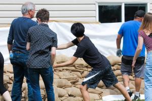 Sandbagging - 02